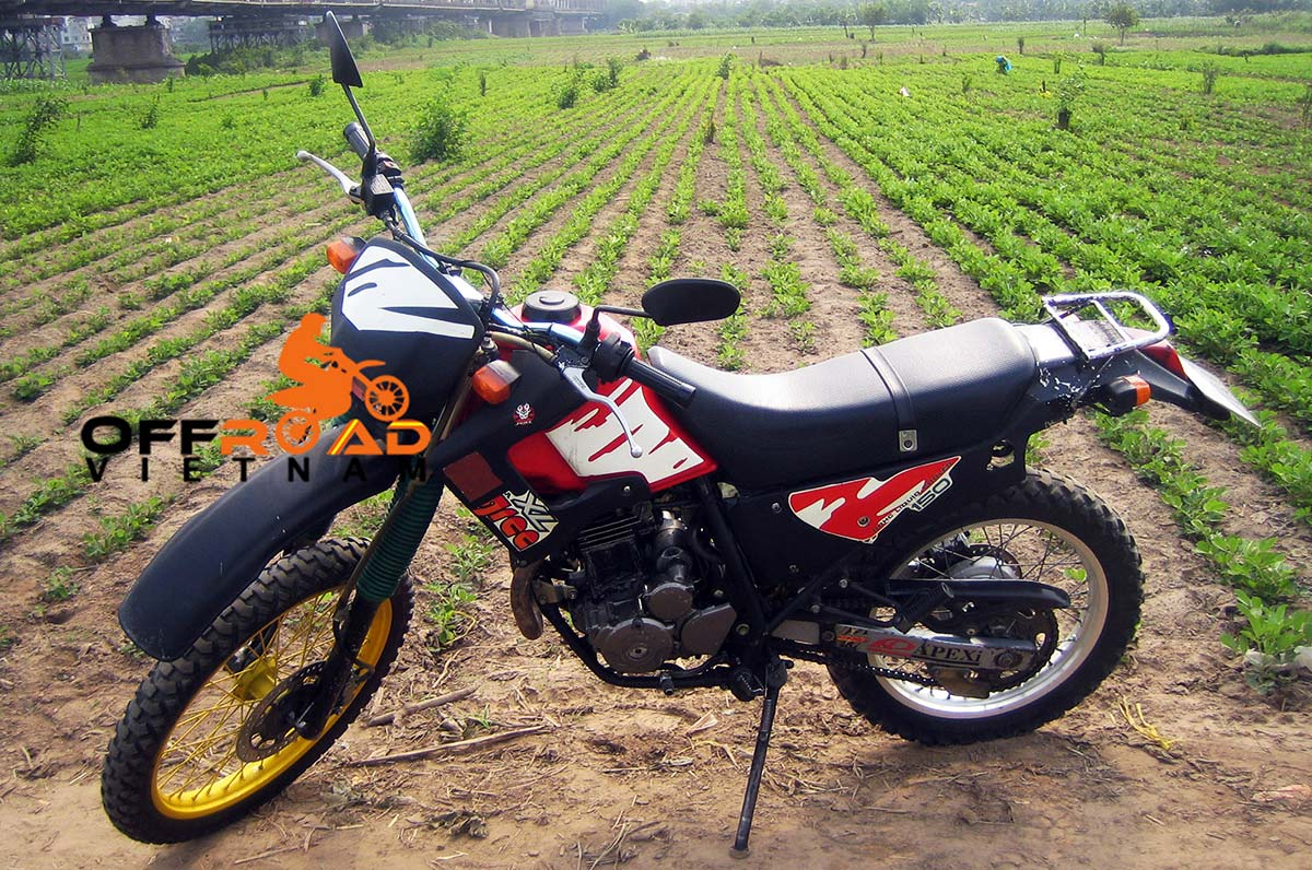Hanoi Motorbike Rental - 250cc Motorcycles: Honda Degree XL 250cc Hanoi Motorbike Rental discontinued