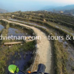 Vietnam dirt bike tours on rice paddy track to Sapa