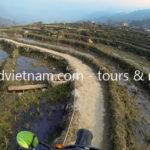 Vietnam dirt bike tours on rice paddy track to Sapa